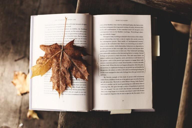 読書の秋。英会話講師がオススメする洋書をご紹介